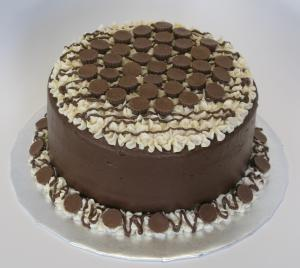 chocolate pb lover's cake 1