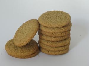 cinnamon graham cracker cookies
